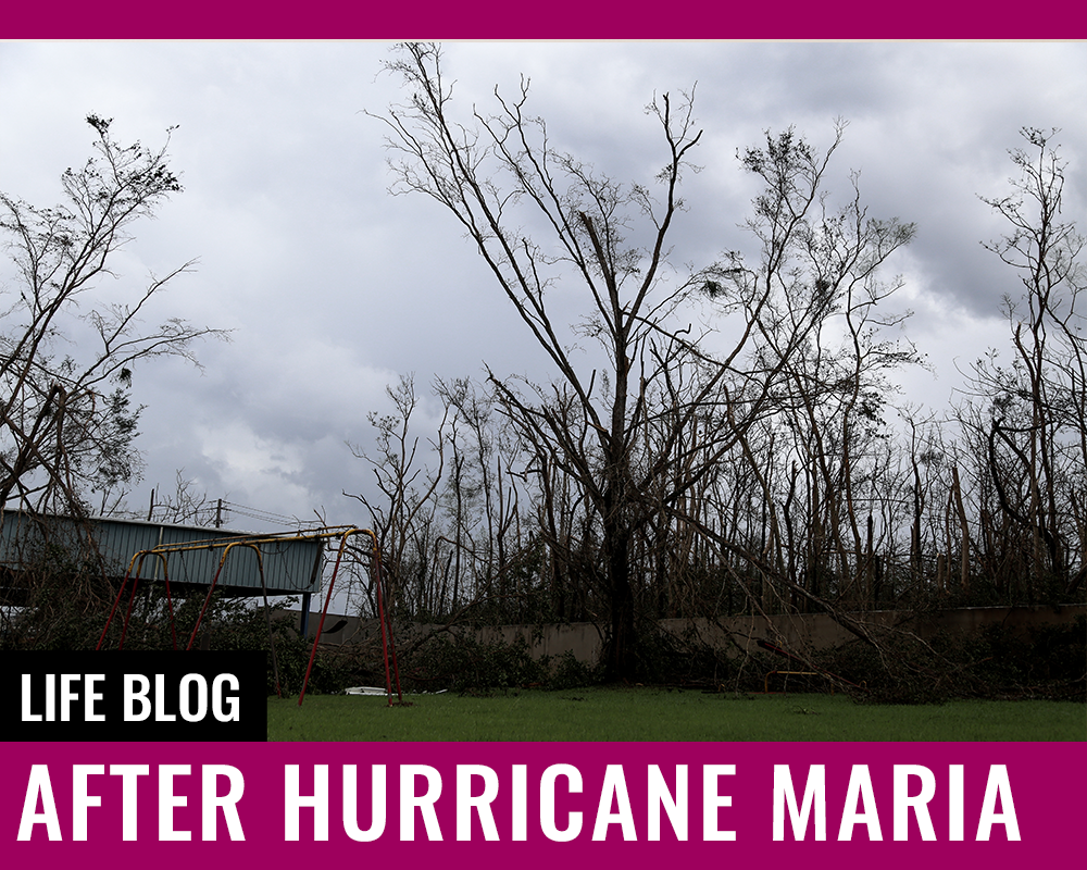 BLOG – After Hurricane Maria